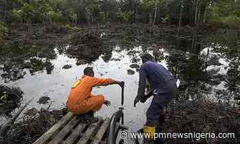 Yenagoa oil spill: Shell blames sabotage, environmentalists say it's a lie - P.M. News