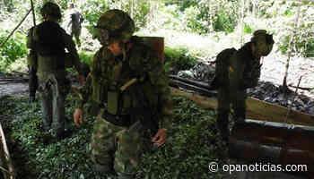 Ejército destruyó en Nóvita-Chocó, laboratorio de droga que le dejaba más de $200 millones mensuales al Eln - Opanoticias