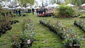 Yvelines. Prévues les 10 et 11 avril, les Floralies d'Orgeval sont annulées - actu.fr