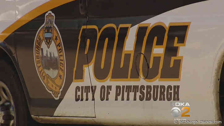 Police: Driver Flees After Hitting Pedestrian On East Carson Street