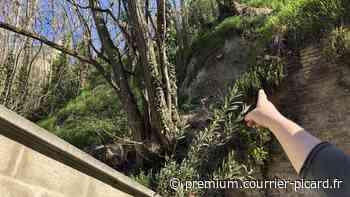 La falaise de Montdidier s'effrite au-dessus de leurs cours [VIDEO] - Courrier picard