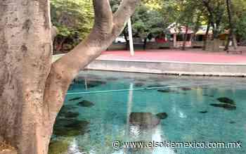 Cierran Ojo de Agua en Magdalena Tlacotepec por contagios Covid - El Sol de México