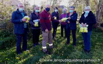 Monein : la campagne de piégeage du frelon asiatique lancée - La République des Pyrénées