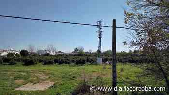 El plan Duque y Flores de Palma del Río pierde 271 viviendas respecto a lo previsto - Diario Córdoba