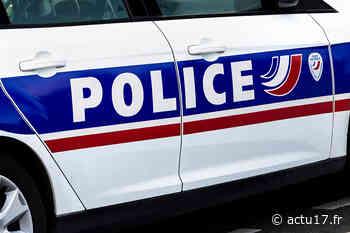 Noisy-le-Sec : Attaquée par un pitbull sans laisse en pleine rue, une femme grièvement blessée - Actu17