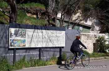 Auvers-sur-Oise : faute de pouvoir être enfin visibles, les racines de Van Gogh s'exposent sur Internet - Le Parisien