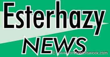 Esterhazy Council discusses rink usage - Yorkton This Week