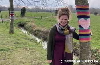 """Ine fleurt haar dorp op met kleurrijke kunstwerkjes: """"Voor volgend project zal ik hulp nodig hebben"""" - Het Nieuwsblad"""