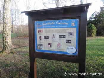 Naturlehrpfad Frankenberger Parkanlage wieder intakt - Frankenberg (Eder) - myheimat.de - myheimat.de