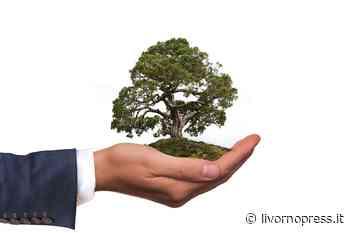 Ciclabile Collesalvetti-Vicarello, Collesalviamo l'Ambiente piantumerà due alberi lungo il percorso - Livornopress - notizie livorno - Livorno Press