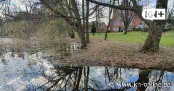Fitnessgeräte werden im Amtmannspark am See in Bordesholm aufgestellt - Kieler Nachrichten
