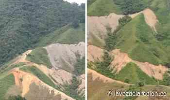 Denuncian afectación ambiental por apertura de una vía en Timaná - Noticias