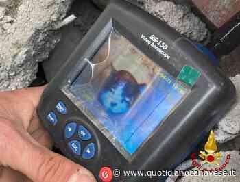 CIRIE' - Gatto incastrato in un tubo: salvato dai vigili del fuoco - FOTO - QC QuotidianoCanavese