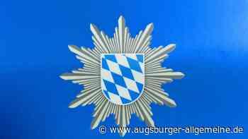 Entflohener Jungbulle bei Ederheim - Augsburger Allgemeine