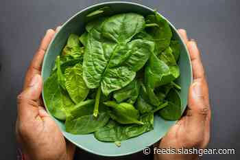 Lab-grown meat uses spinach 'skeletons' for greener process