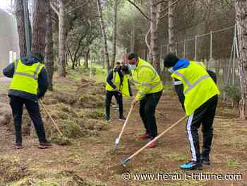 Agde offre une seconde chance aux jeunes avec les chantiers loisirs - Hérault-Tribune