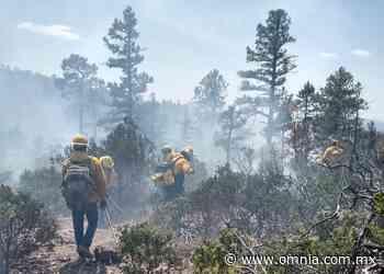 Sofocan brigadistas de Gobierno del Estado y soldados incendio en San Juanito - Omnia