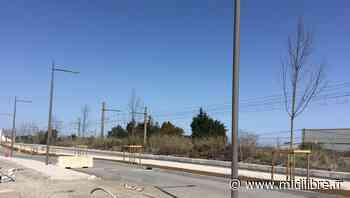 Frontignan : un tronçon bien engagé sur le boulevard des Républicains-Espagnols - Midi Libre