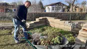 Gartensaison in Guben: Warum Jan Kuberski das Garten-Fieber gepackt hat - Lausitzer Rundschau