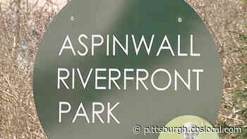 Aspinwall Riverfront Park Applying For Federal Stimulus Money To Expand