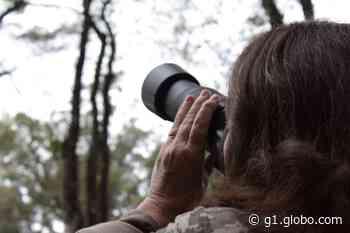 Inscrições para concurso fotográfico e literário estão abertas em Ilha Solteira - G1