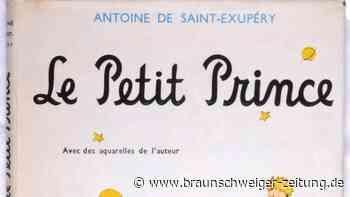 """Lieblingsbuch: """"Der kleine Prinz"""" ist ein literarisches Phänomen"""