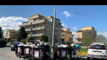 """Lettori - """"Ama Roma"""""""
