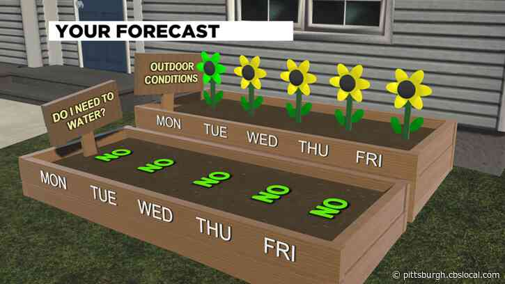 Pittsburgh Weather: Monday Rain Chances Kick Off Potentially Wet Week Ahead
