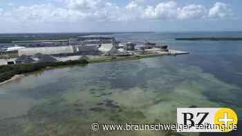 Evakuierung: Undichtes Abwasserbecken: Florida droht Umweltkatastrophe