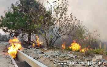 Zapopan, Tala y Ameca los más afectados por el incendio de La Primavera - El Occidental