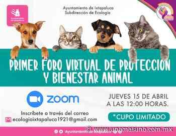 En Ixtapaluca, Edomex; Realizarán foro para crear conciencia sobre NO maltrato animal - UnomásUno