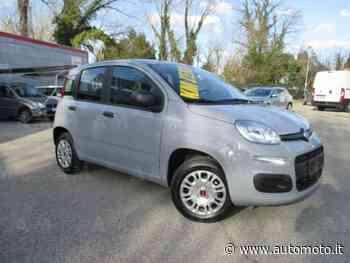 Vendo Fiat Panda 1.2 Easy nuova a Maniago, Pordenone (codice 8763630) - Automoto.it