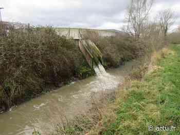 Pollution à Claye-Souilly et Villeparisis : la Reneuse est un égout à ciel ouvert - actu.fr
