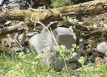 TROFARELLO – Rio Sauglio vittima degli inquinatori – Il Mercoledi - Il Mercoledi