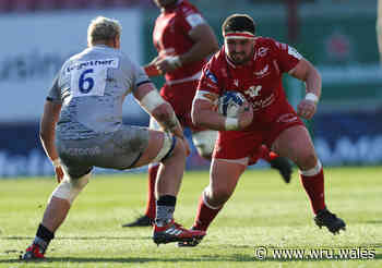 Scarlets suffer heavy Sale defeat - Welsh Rugby Union