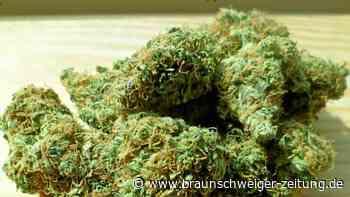 Spürhund entdeckt Cannabis in Braunschweiger Wohnung