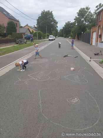 Welke straat volgt Heidekasteeldreef op als coolste speelstr... (Berlare) - Het Nieuwsblad