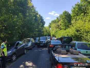 Confinement en Seine-et-Marne. 109 verbalisations en forêt de Fontainebleau - actu.fr