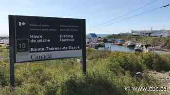 4 temporary foreign workers test positive for COVID-19 at Gaspé fish plant, 44 in isolation