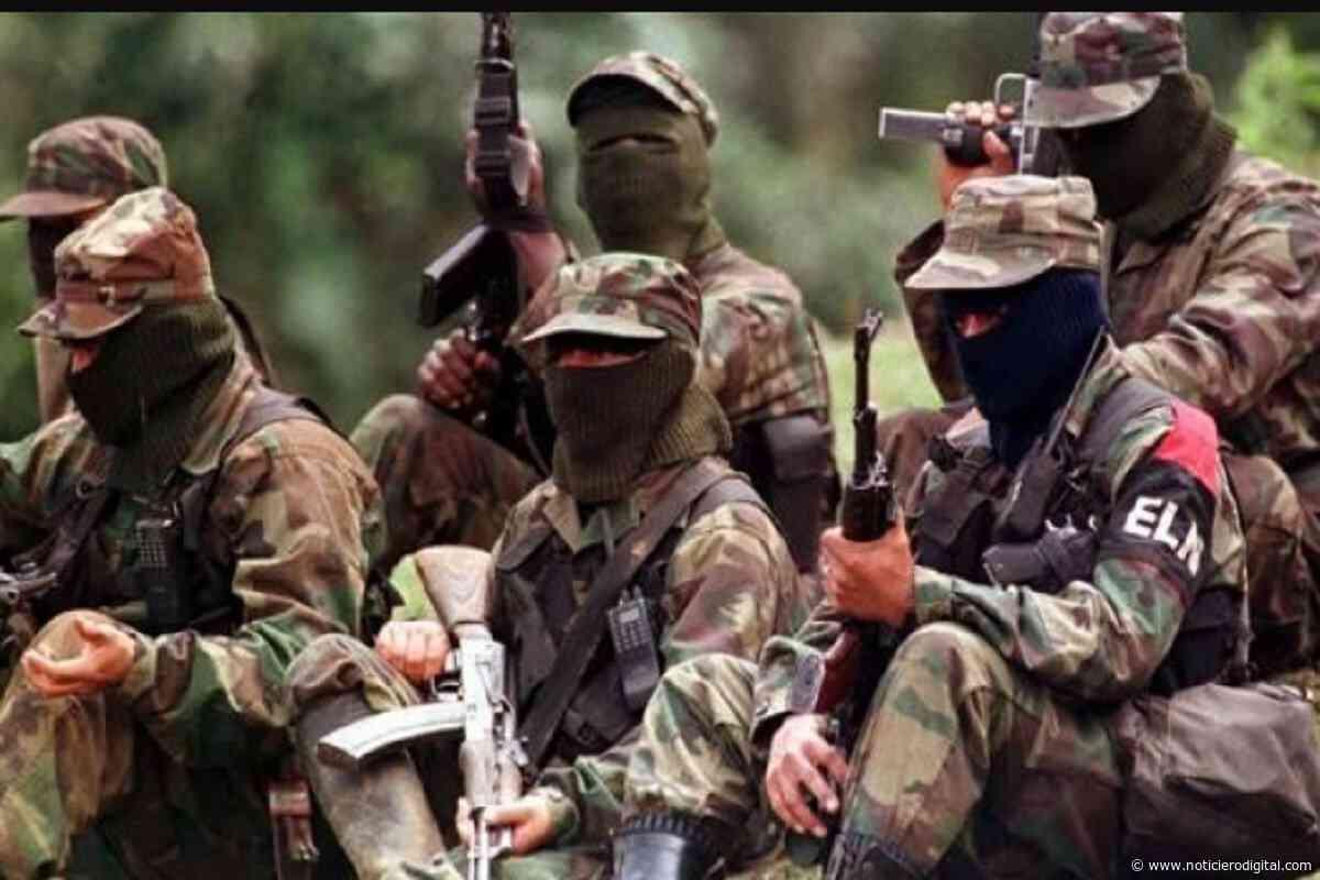 Farc-EP presionó a indígenas de Puerto Ayacucho para que aceptaran presencia guerrillera en la zona: Tarazona - Noticiero Digital