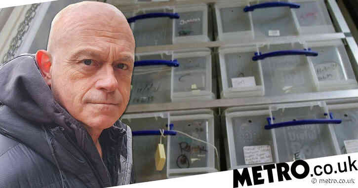 Ross Kemp's Britain's Tiger Kings viewers outraged as exotic snakes kept in small plastic boxes