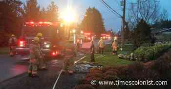 Saanich Fire Department investigating Cordova Bay house fire - Times Colonist