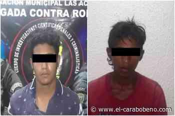 Arrestados azotes del Mercado Mayorista de Tocuyito y de Naguanagua - El Carabobeño