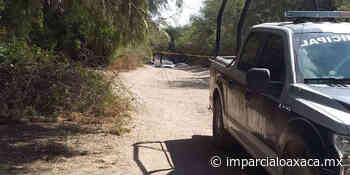 Encuentran cadáver putrefacto de hombre desaparecido en Puerto Escondido - El Imparcial de Oaxaca