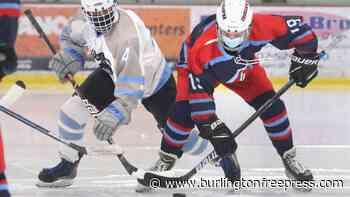 25 of VT's best ice hockey players: The 20th annual Free Press All-State Girls Hockey Team - BurlingtonFreePress.com