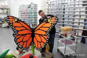 LEGO Exhibit Coming to Fort Worth Botanic Garden - Fort Worth Magazine