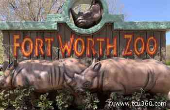 Second phase of Fort Worth Zoo renovation project to open in mid-April - TCU 360