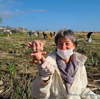Pauillac : Grand nettoyage de printemps - Sud Ouest