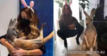Kate Beckinsale sparks backlash after posting videos of herself cradling Aussie animals including a kangaroo - 9TheFIX