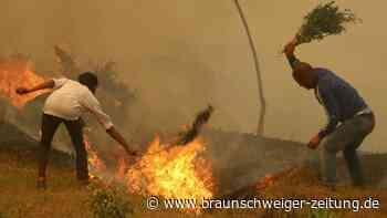 Nepal leidet unter Walbdränden und Rauchdecke
